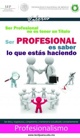 valores profesionalismo Poster