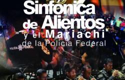 SINFONIA DE ALIENTOS DE LA POLICIA FEDERAL Poster 2016