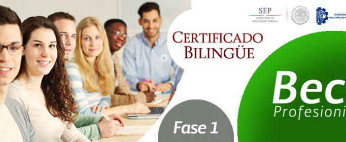 Beca-Profesionista-Certificado-Bilingue-FASE-1SLYDER-2017